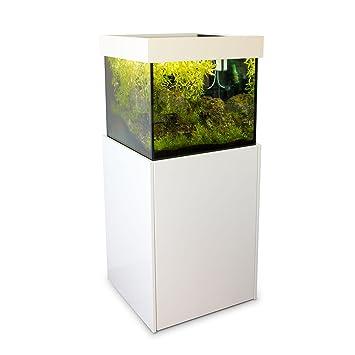 Axperto Design Aquarium 60x60x57 Weiss Als Suss Und Meerwasser