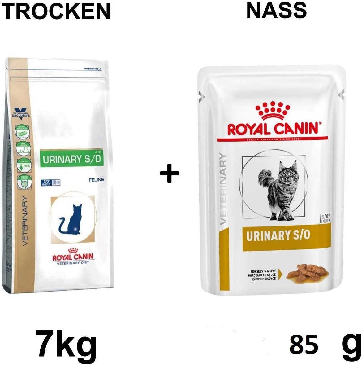 ROYAL CANIN Urinary S/o LP 34 7 kg + Gratis 100 g Gato Forro ...