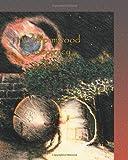 The Wormwood Conspiracy, Joel Pesce, 1419620096