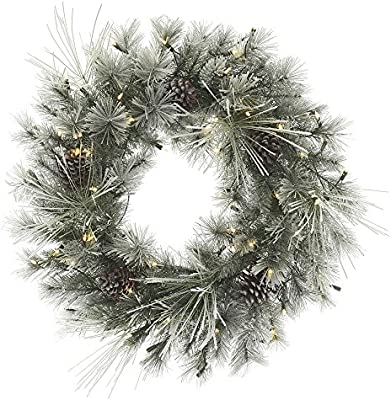 Vickerman Frosted Creek Series Wreath R172431LED