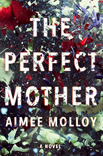 The Perfect Mother: A Novel by [Molloy, Aimee]