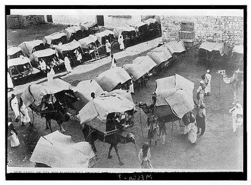 HistoricalFindings Photo: Mecca,ca. 1910,Camels,Tents of Pilgrims,Mecca,Saudi Arabia,American Colony