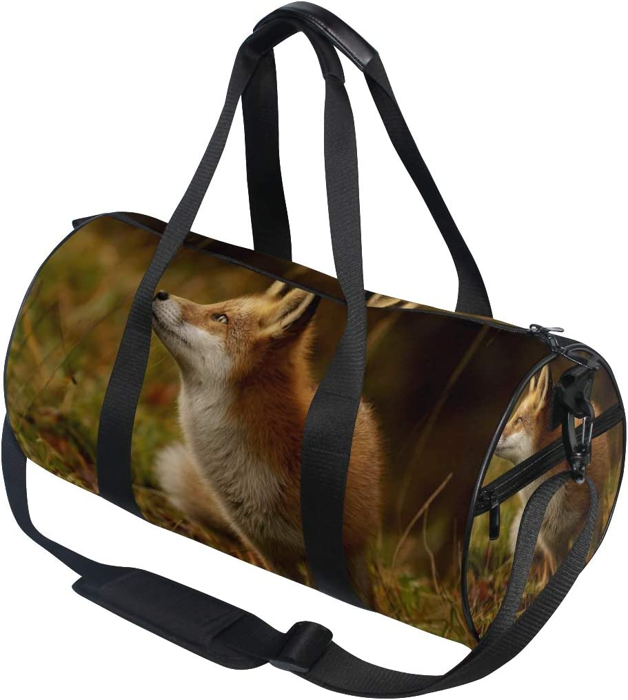 OuLian Duffel Bag Flamingos Birds Women Garment Gym Tote Bag Best Sports Bag for Boys