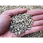 Geosism & Nature Vermiculite, agrivermiculite 2/5 mm (1 kg - c.a 9 lt) 61gG1VtDwoL. SS150
