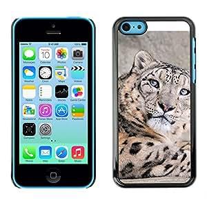 EJOY---Cubierta de la caja de protección la piel dura para el ** iPhone 5C ** --Leopardo de nieve