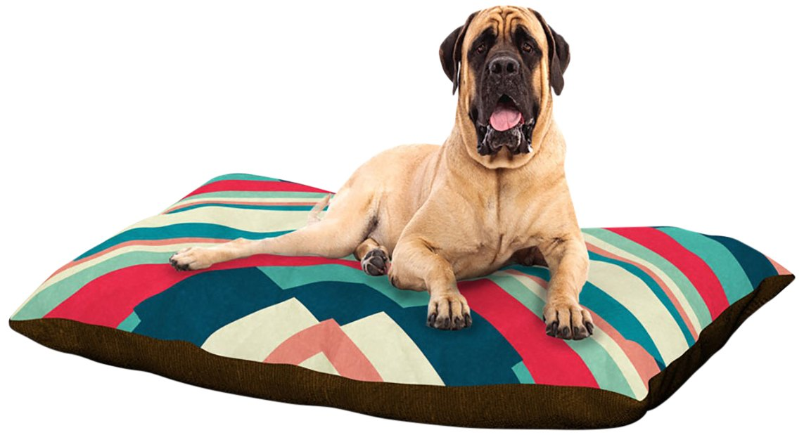 X-Large 40\ Kess InHouse Danny Ivan Pass This On  Dog Bed, 50 by 60-Inch