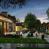 Outdoor Solar Garden Stake Lights, SOUBUN 2 Pack