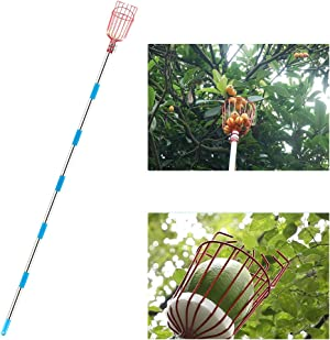 BestFire Fruit Picker Tool, 13-Foot Fruit Picking Pole with Basket Telescoping, Lightweight Fruit Harvester Tool Stainless Steel Fruits Catcher Tree Picker for Getting Apple, Fruits Tree