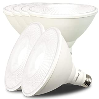 AmeriLuck Dimmable Outdoor PAR38 LED Flood Light Bulb, 100W Equiv. 1050 Lumens 13W (5000K | Daylight, 6 Pack)