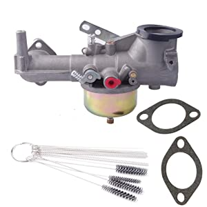 Dosens 491590 Carburetor Carb Kit for Briggs & Stratton 390811 392152 Carb Fits Briggs & Stratton 191700 192700 193700 Engines with Gaskets & Cleaning Tool kit