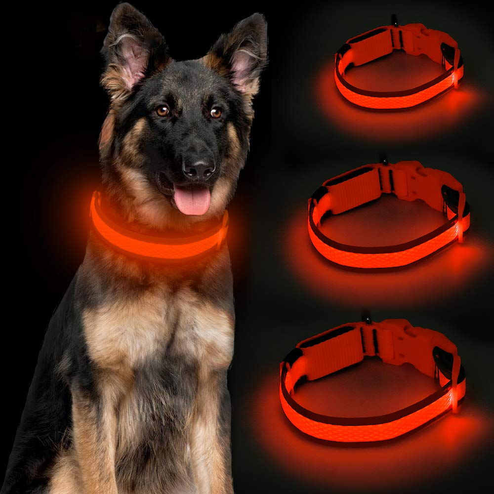 Great for spotting our dog in the dark!