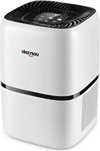 Okaysou AirMic4S Medical Grade Ultra-Duo Air Purifier for Home Pets, Smokers, Odors, Dust, Pollen, H13 99.97% True HEPA Air Cleaner for Office, Bedroom, Modern Design, Washable Pre-Filter, White