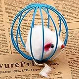 Mini Hole Roller Dog Toy,Baynne Funny Animal Pet Dog Toy Puppy Cat Toys 8*4cm Round Pet Toys