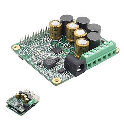 LaDicha Módulo De Audio De La Tarjeta De Expansión HiFi Amp ...