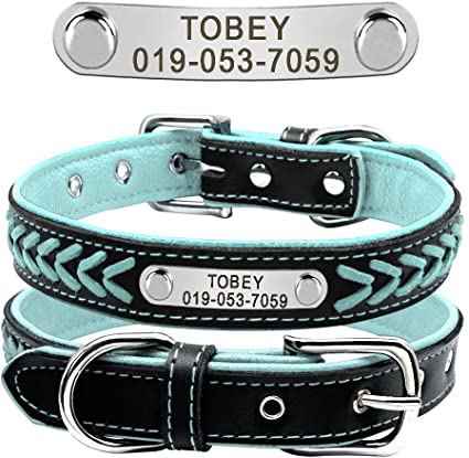 Didog Leather Custom Collar,Braided Leather Engraved Collar