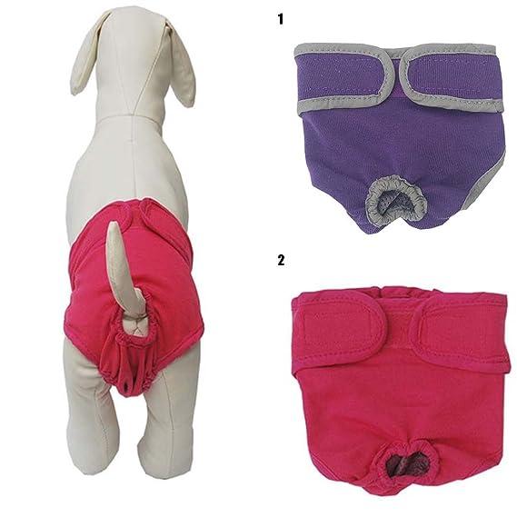 Pañal para Mascotas, Legendog Pantalones Sanitarios para Perros Pañales Reutilizables para los Perros Transpirables Paquete para Perros Suministros para ...