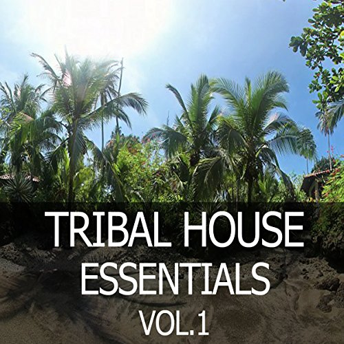 Tribal forecast dani toro mp3 downloads for Tribal house music 2015