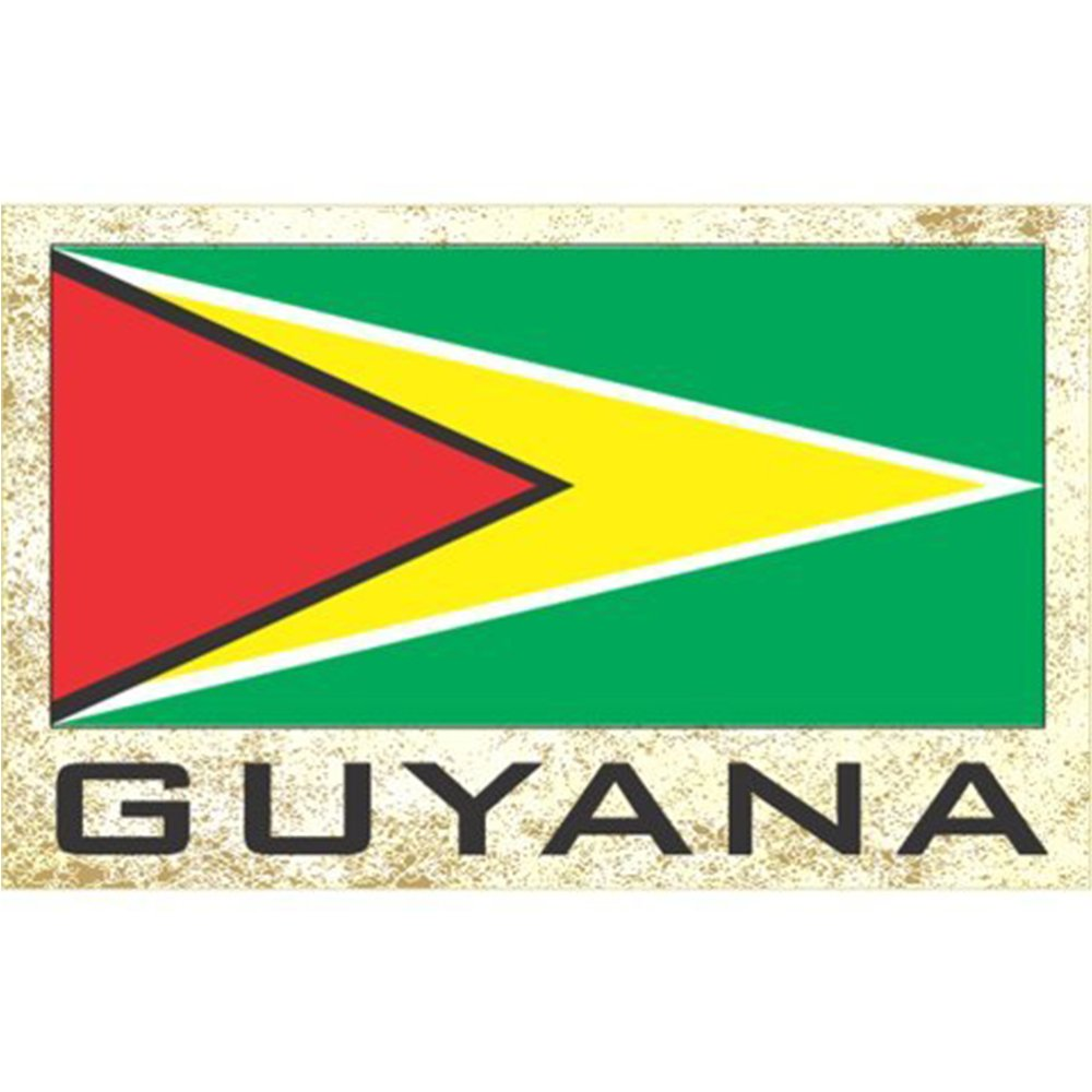 Flag Fridge Refrigerator Magnets – Americas Group 2 (Country: Guyana)