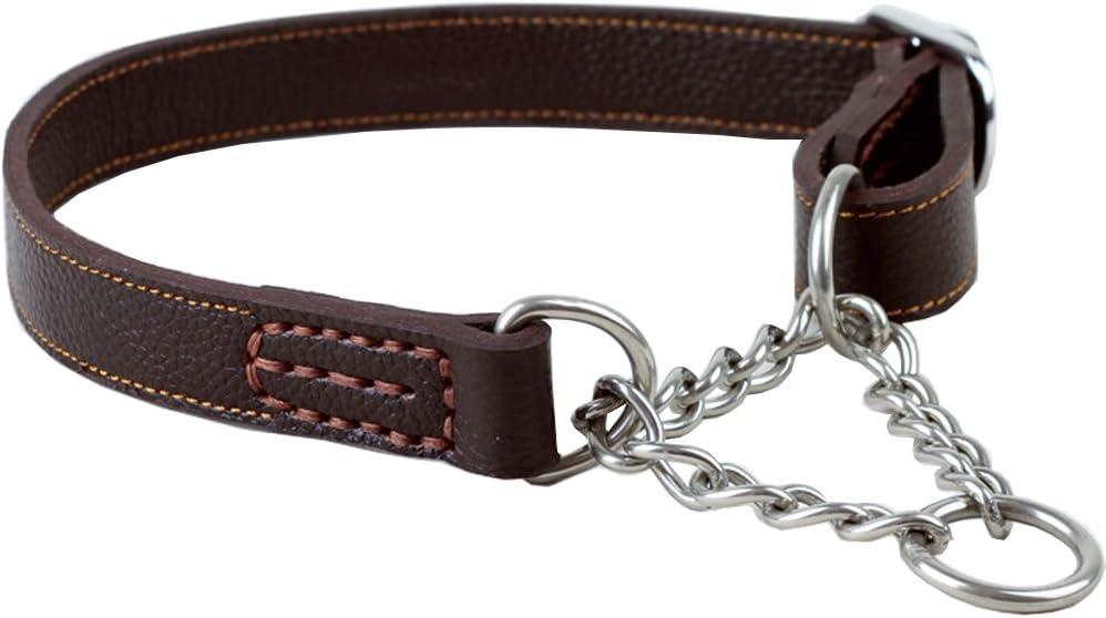 Dog Collar Martingale Chain Dog Collar Check Chain Collar Geometric Dog Collar Metal buckle Male Dog Collar