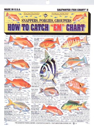 Fishermans Saltwater Fish Chart #6 (Fish Chart)