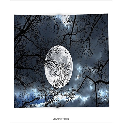 Custom printed Throw Blanket with Farm House Decor Full Moon at Night in the Forest Winter Time Mystical Dramatic Days Luna Photo Decor Slate Blue Bl Super soft and Cozy (Halloween At Luna Park)