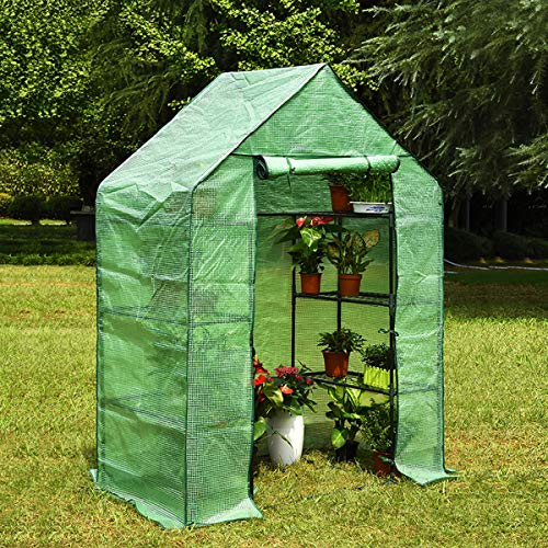 KINGSO Greenhouse with 6 Sturdy Shelves Portable Walk-in Plants Greenhouse for Outdoor/Indoor Gardens, Patios, and Backyards, Greenhouse kit Includes Plastic Cover, Roll-Up Zipper Door(Green)