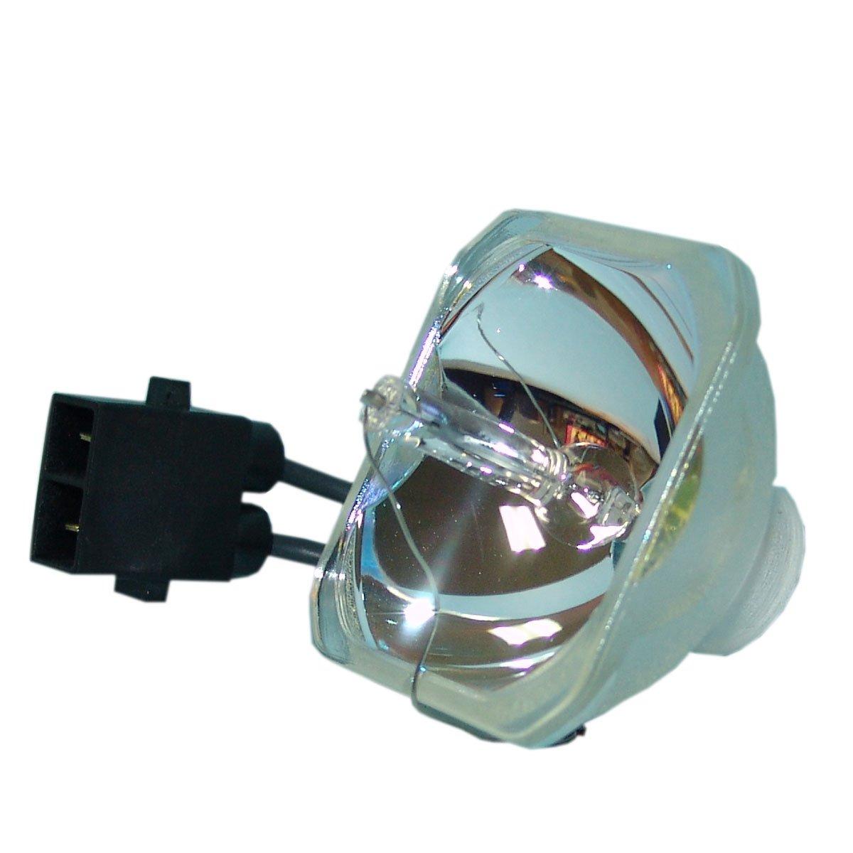 Lutema プロジェクター交換用ランプ ハウジング/電球付き Epson PowerLite 260d用 Economy Economy Lamp Only B07KTL21CP