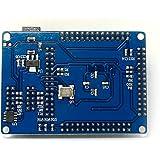 LILLYエレクトロニクス ALTERA FPGA Cyclone IIのEP2C5T144最小システム開発ボード