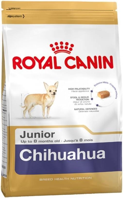 Royal canin Chihuahua junior pienso para Chihuahua joven