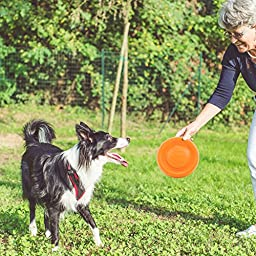 LaRoo Dog Flying Disc Indestructible Dog Frisbee Dog Toys Pet Frisbee for Puppies, Small, Medium and Large Dogs - Orange