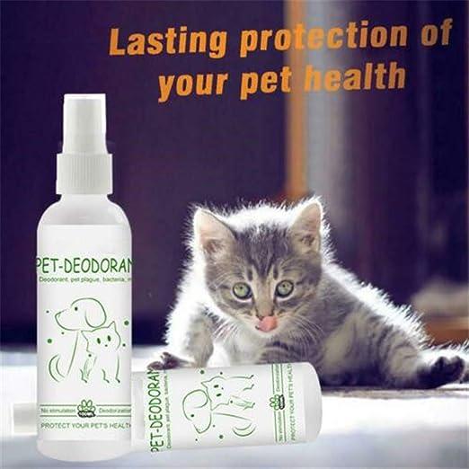 S-SNAIL-OO Desodorante Natural para Mascotas, Aerosoles Desodorantes para Mascotas, Desodorante para Colonia para Perros y Gatos, Olor Fresco y Limpio para Refrescar Y Desodorizar (2 Piezas): Amazon.es: Productos para mascotas