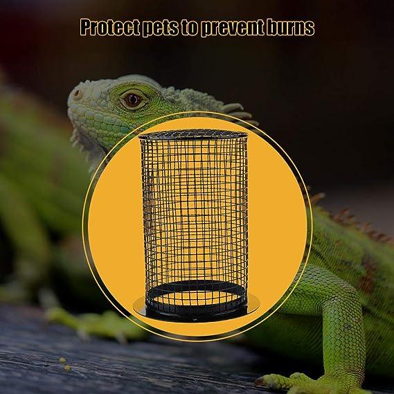 Zerodis Metal Redondeado en Forma de Reptil Calefacción Bombilla ...
