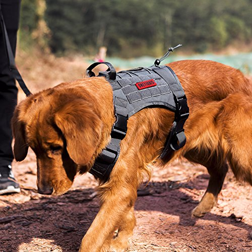 OneTigris Tactical Service Dog Vest – Water-Resistant Comfortable Military Patrol K9 Dog Harness with Handle (Medium, Grey)