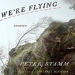 We're Flying: Stories | Peter Stamm,Michael Hofmann (translator)