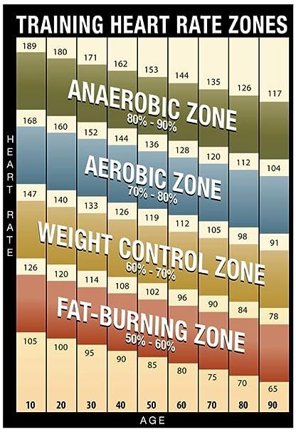 Amazon com training heart rate zones chart modern poster 13 x
