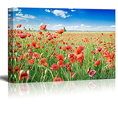 Canvas Prints Wall Art - Red Poppies on Green Field Under Blue Sky - 12