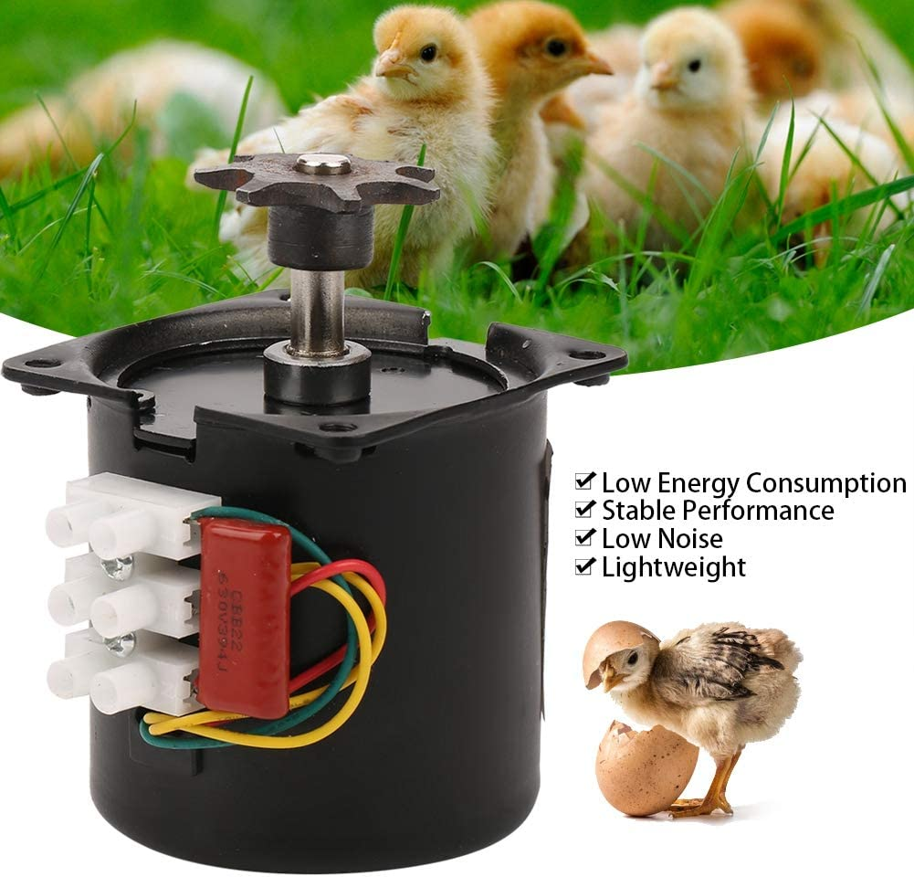 Fdit Mini Egg Incubator Temperature Automatic Digital Eggs Poultry Hatcher Tool for Duck Bird Chicken Egg With Gear
