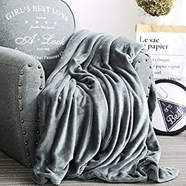 Luxury Collection Ultra Soft Plush Fleece Lightweight All-Season Throw/Bed Blanket, Throw, Azure Gray