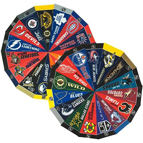 NHL Hockey Complete 30 Team 4x9 Mini Pennant Set Hockey Merchandise