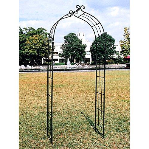 ガーデンアーチD型(109cm、高さ225cm)[ロートアイアン使用の高級タイプアーチ] ノーブランド品 B0797JTH9Y