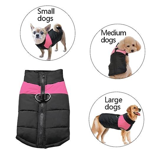 Abrigo Berry para perro de tamaño pequeño, mediano o grande (S-5XL): Amazon.es: Productos para mascotas