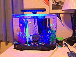 Amazon Com Glofish 29045 Aquarium Kit With Blue Led