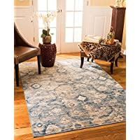NaturalAreaRugs Iris Vintage Turkish Polypropylene Rug, Traditional, Stain Resistant, Durable, Eco-Friendly Blue/Beige (5 Feet 3 Inches X 7 Feet 7 Inches)