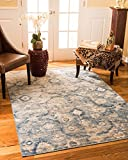 NaturalAreaRugs Iris Vintage Turkish Polypropylene Rug, Traditional, Durable, Eco-Friendly, Blue/Beige (7 Feet 10 Inches X 10 Feet 6 Inches)