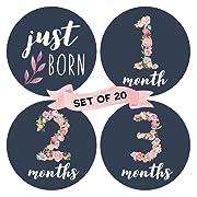 Floral Baby Monthly Milestone Stickers (Set of 20) - Birth to 12 Months + 7 Bonus Achievement Stickers