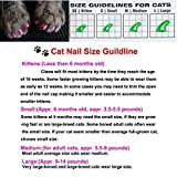 100Pcs Colorful Cats Paws Grooming Nail Claw Cap