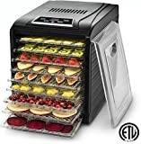 Gourmia GFD1950 Digital Food Dehydrator - 9 Drying Trays Plus Fruit Leather Tray - Digital Temperature Control - Transparent Window - Free recipe Book Included