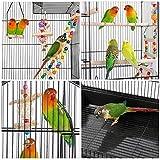 YAHEETECH Roof Top Large Flight Parakeet Parrot