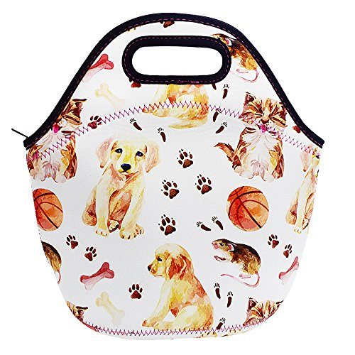 Acelane Neoprene Insulated Lunch Bag Artists Tote Design for