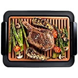 GOTHAM STEEL Smokeless Electric Grill, Portable and Nonstick As Seen On TV (Regular)